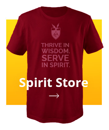 spirit-store